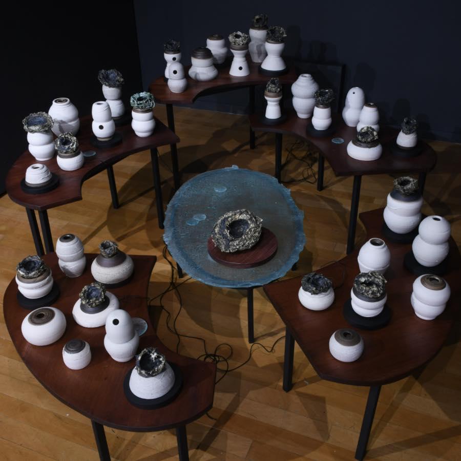 Aves y Agüeros, Exposición individual de Dhara Rivera en la Galería de Arte de Sagrado
